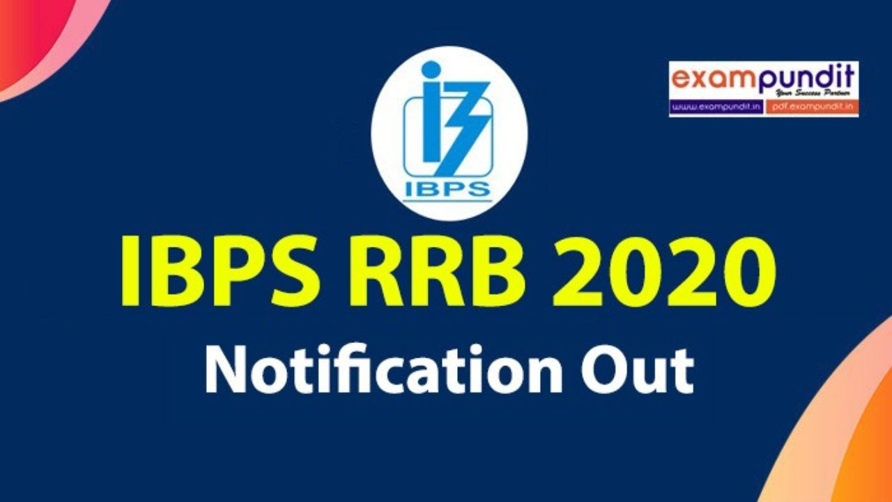 ibps bank po recruitment 2013 online application